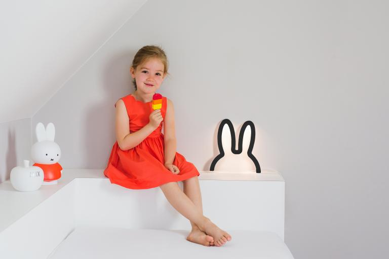 Wall Art | miffy