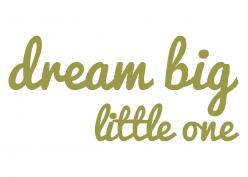 Wall Art | Dream big muursticker
